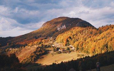 #Concurs   Armin Toader – Experiențe de pe munții românești